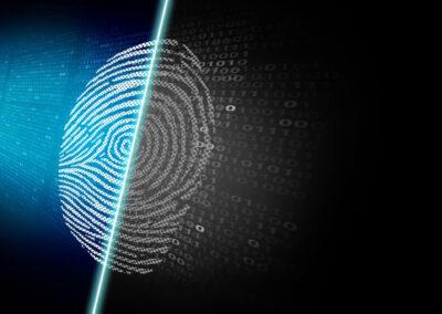 Digital forensic investigation